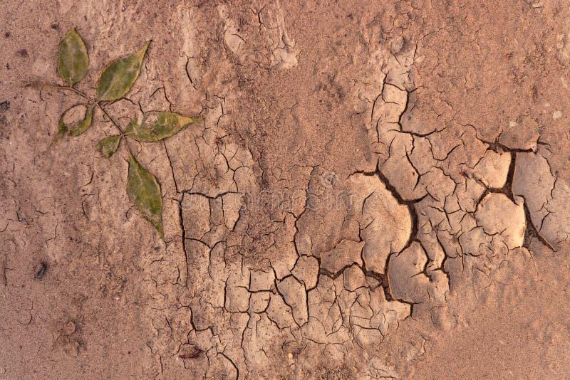 Primer del suelo seco antes de la lluvia imágenes de archivo libres de regalías