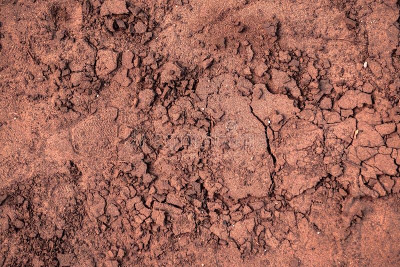 Primer del suelo seco antes de la lluvia fotografía de archivo