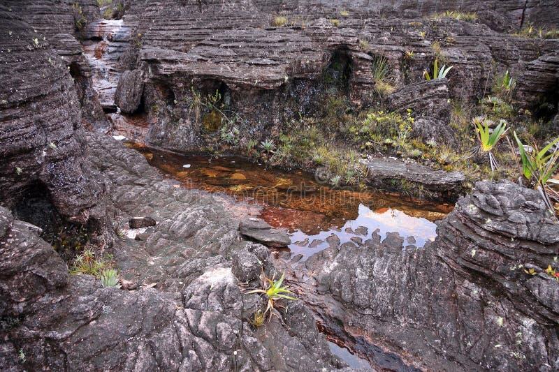 Primer del terreno rocoso increíble con las piscinas del soporte Roraima imagen de archivo