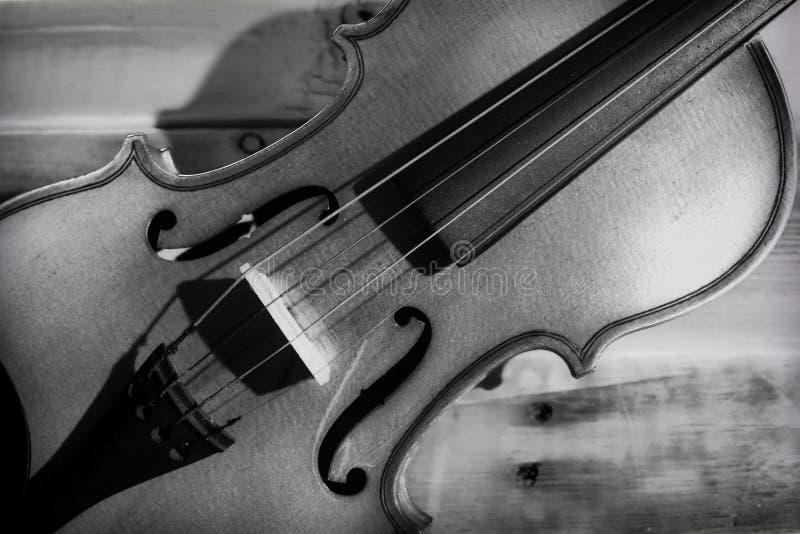Primer del violín en blanco y negro fotos de archivo libres de regalías
