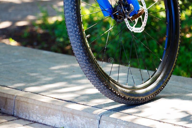 Primer delantero de la rueda de la bici de montaña imagen de archivo