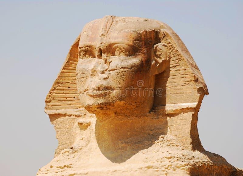 Primer en la gran esfinge en El Cairo, Giza, Egipto imagenes de archivo