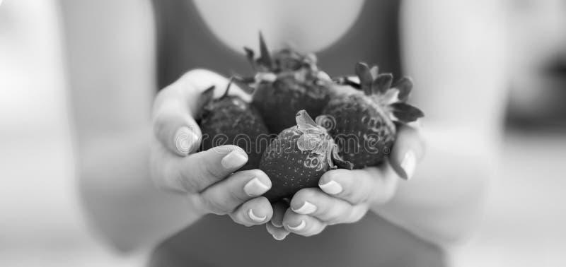 Primer en la mujer joven que muestra las fresas fotos de archivo