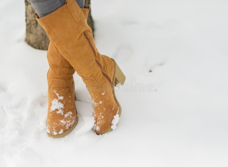 Primer en las piernas de la mujer en cargadores del programa inicial del invierno en nieve fotos de archivo libres de regalías