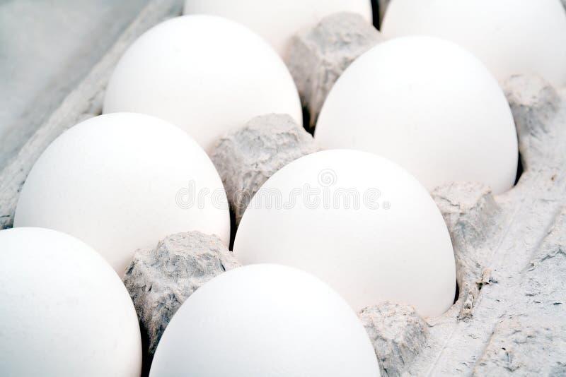 Primer extremo de los huevos una docena foto de archivo libre de regalías