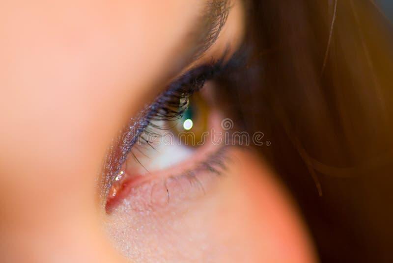 Primer femenino del ojo fotografía de archivo