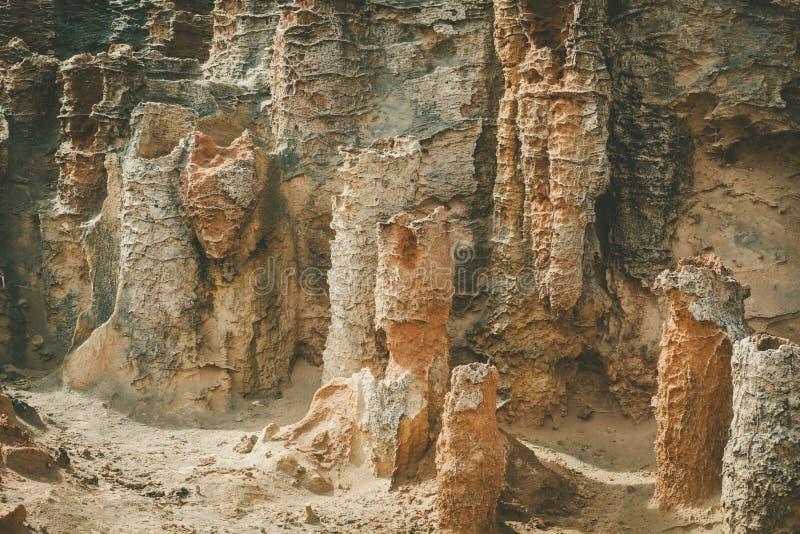Primer inusual de las formaciones de roca en el bosque aterrorizado, cabo Bridgewater, Australia imágenes de archivo libres de regalías