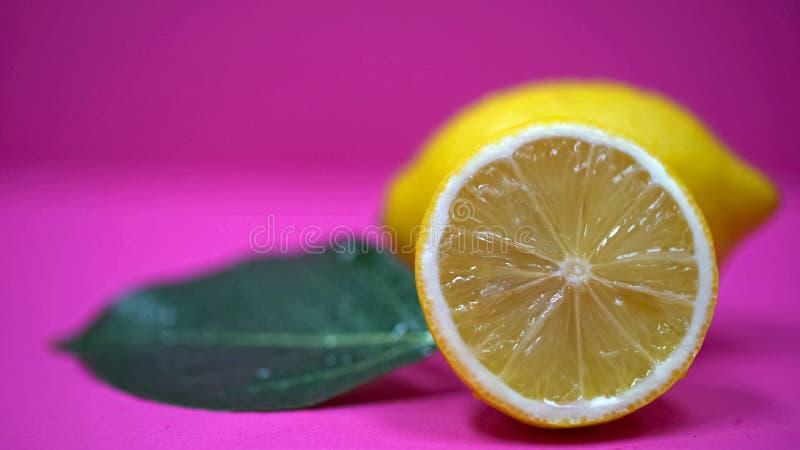 Primer jugoso de los limones, alimento biológico de restauración, fruta cítrica de la vitamina C, cosmetología foto de archivo