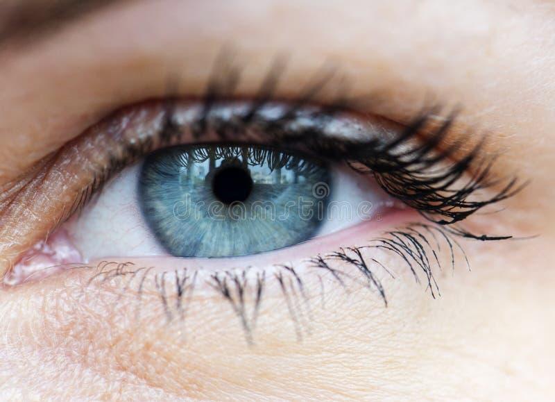 Primer macro del ojo azul humano fotos de archivo