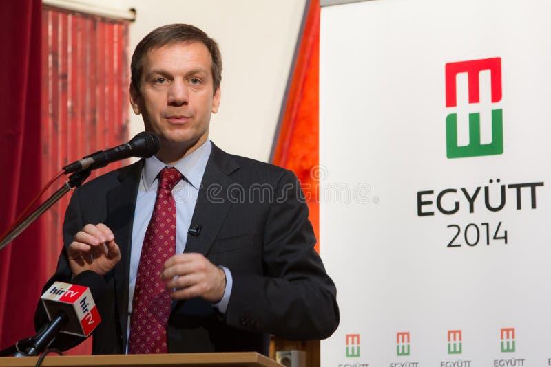 Primer ministro anterior de Hungría, Sr. Gordon Bajnai imagenes de archivo