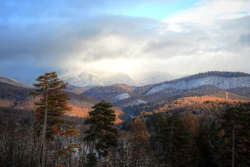 Primer paisaje de la nieve imágenes de archivo libres de regalías