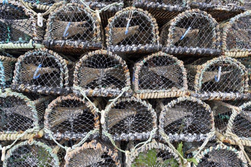 Primer potes de pesca de la langosta y del cangrejo fotografía de archivo libre de regalías