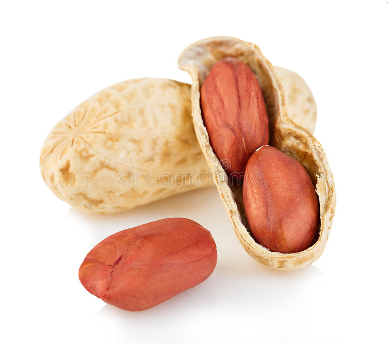 Primer secado de los cacahuetes en un fondo blanco fotografía de archivo libre de regalías