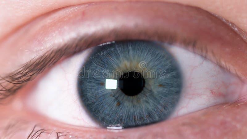 Primer tirado de ojo humano Primer del ojo humano hermoso azul con las manchas marrones en el iris Reacción de exprimir humana imagenes de archivo