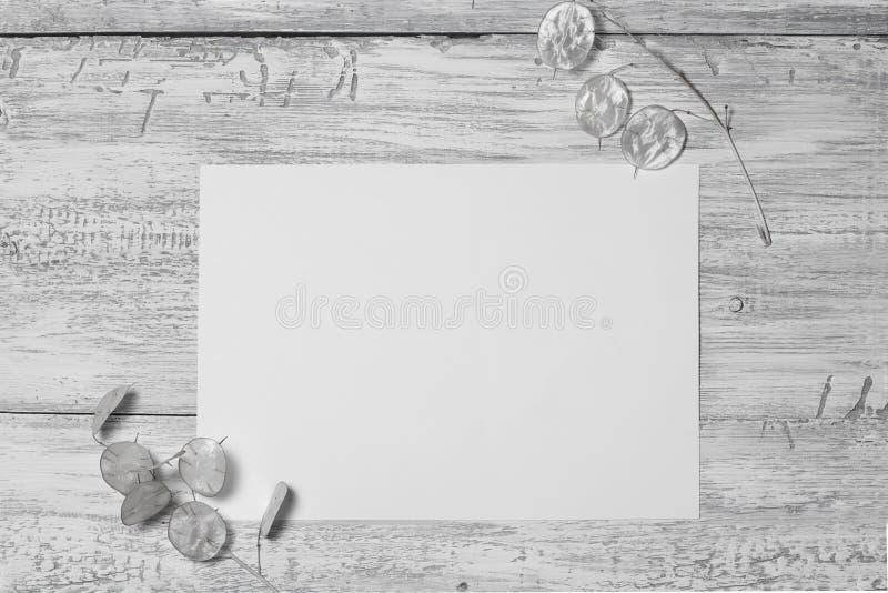 Primer una hoja en blanco, de papel y de hojas inusuales en fondo de madera resistido fotografía de archivo libre de regalías