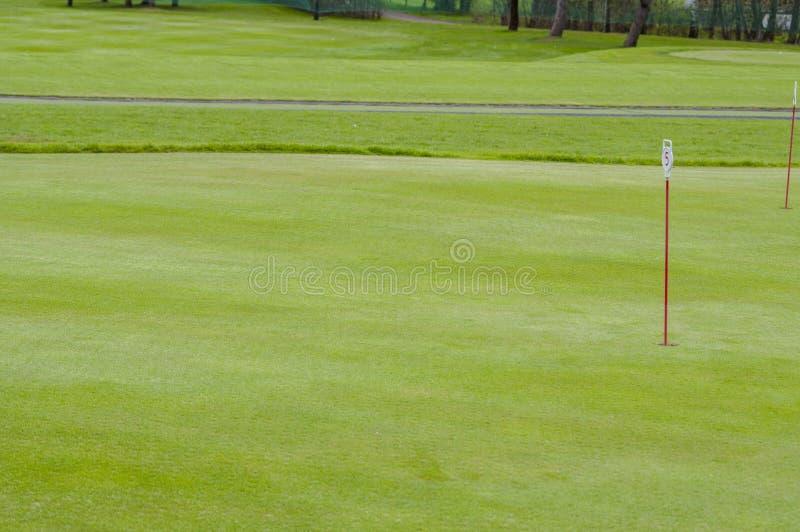 Primer verde del golf imagen de archivo libre de regalías