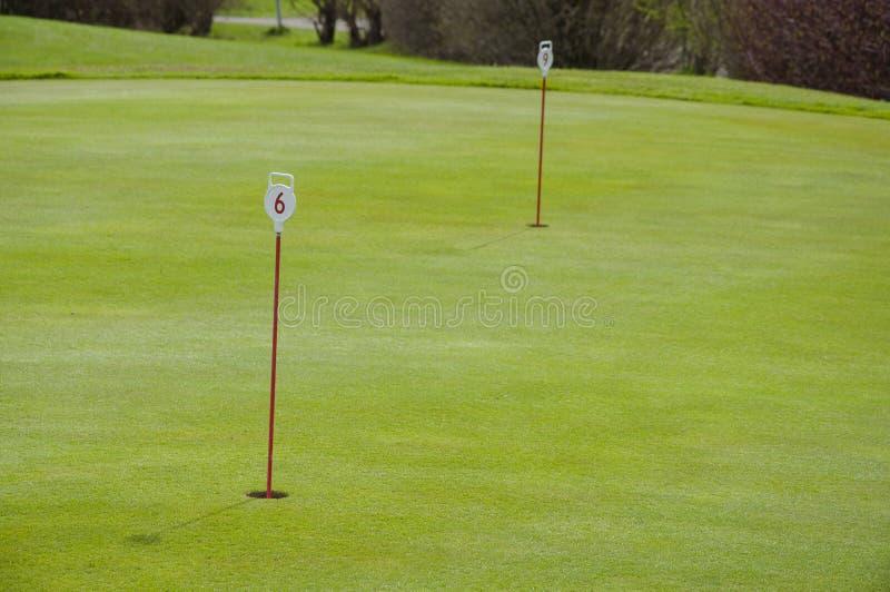 Primer verde del golf imagen de archivo