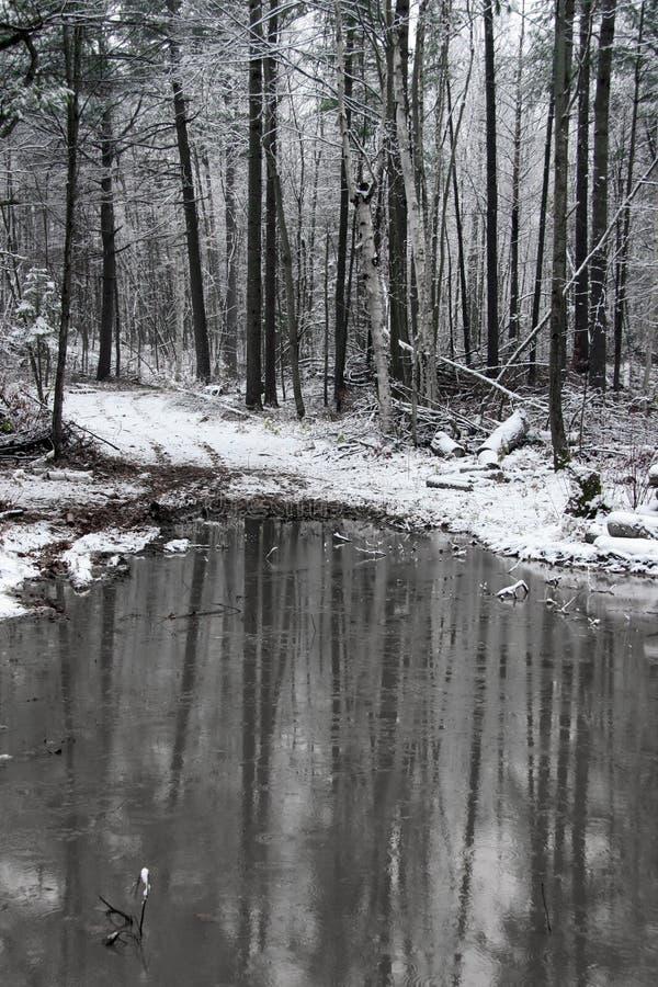 Primera nieve con una charca foto de archivo