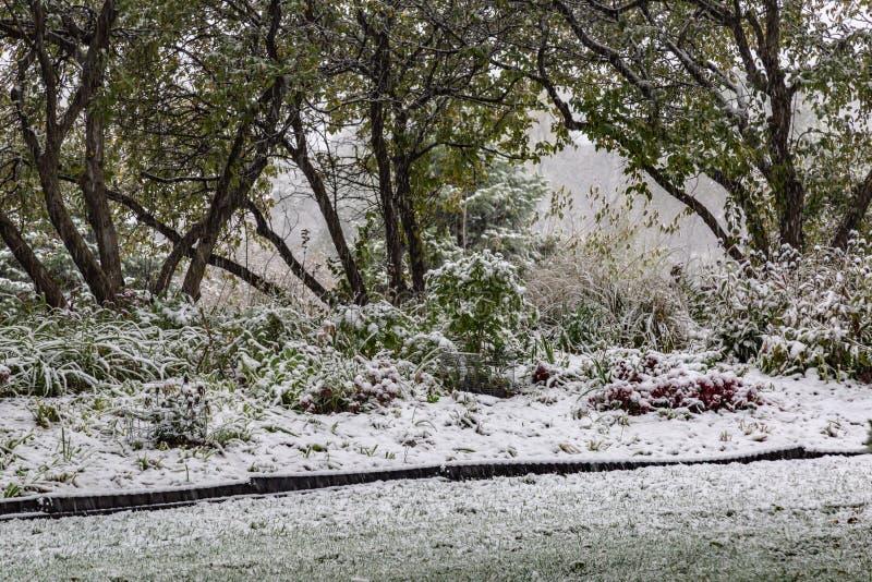 Primera nieve de la estación de 2018 inviernos en Omaha Nebraska los E.E.U.U. foto de archivo libre de regalías