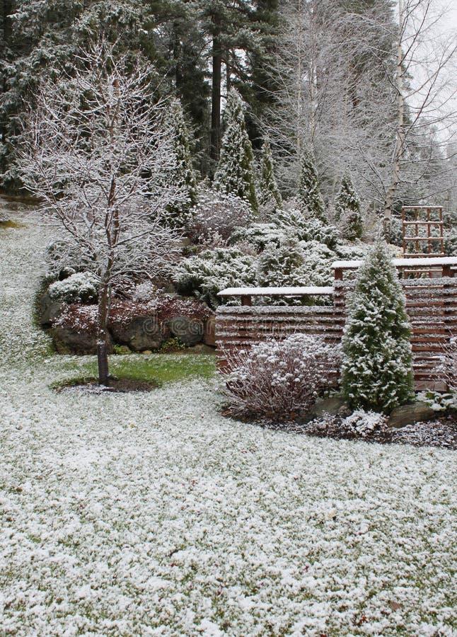 Primera nieve en jardín fotografía de archivo
