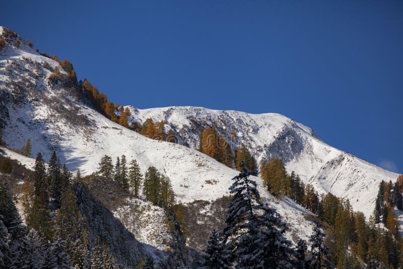 Primera nieve en las montañas foto de archivo libre de regalías