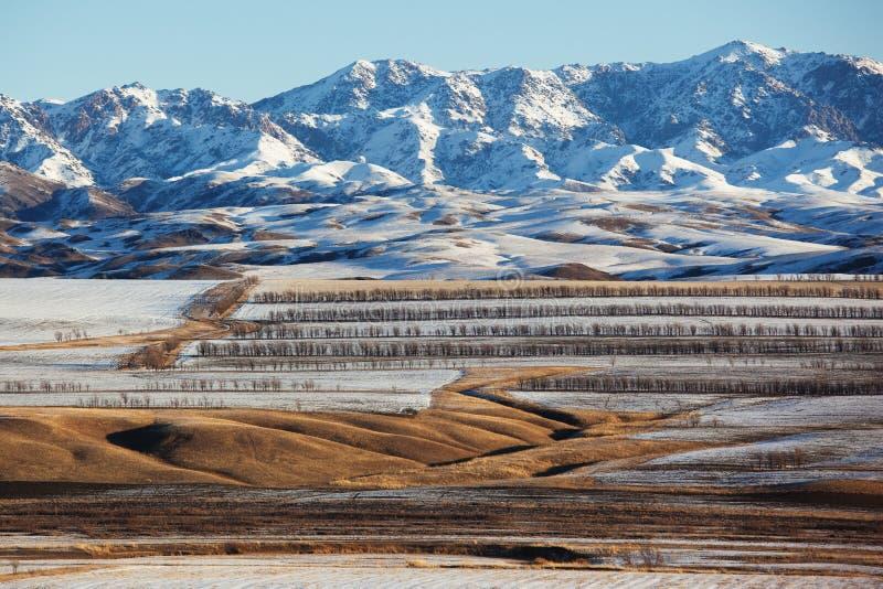 Primera nieve en los campos foto de archivo libre de regalías