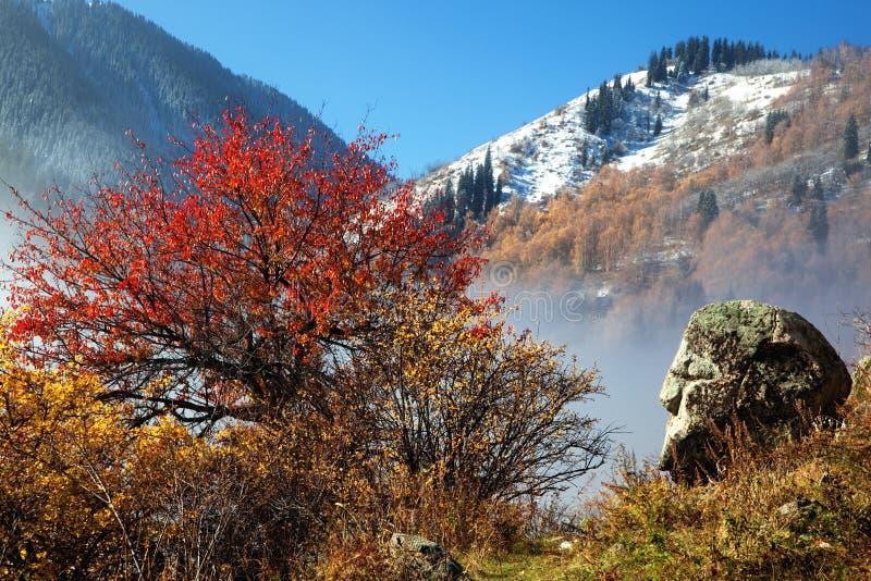 Primera nieve en montañas del otoño imágenes de archivo libres de regalías