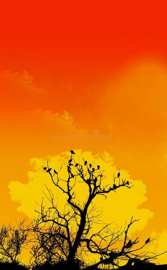 Primero plano anaranjado del cielo y del árbol ilustración del vector