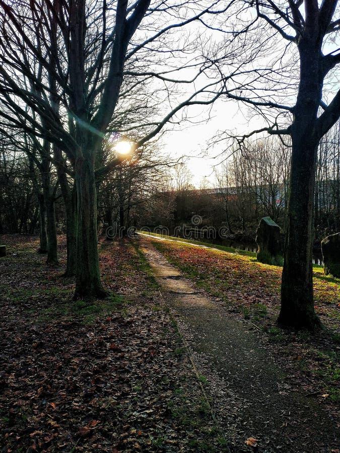 Primeros rayos de sol de la mañana fotografía de archivo libre de regalías