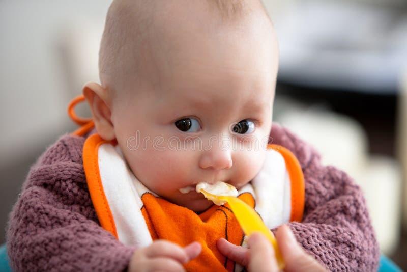 Primi pasti del bambino. immagini stock libere da diritti