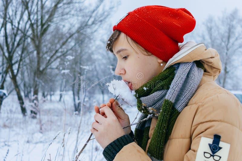 Primi piani di inverno della ragazza che leccano neve fotografia stock libera da diritti