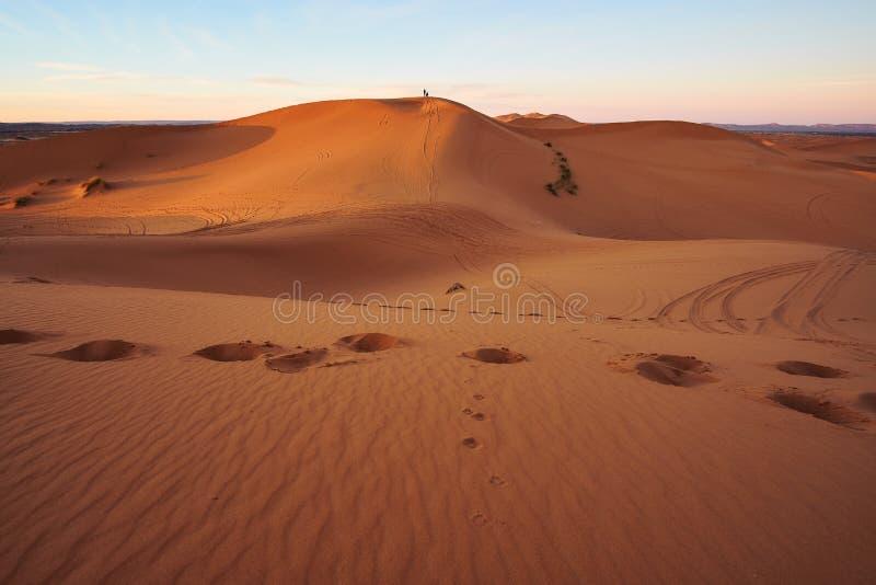 Primi raggi del sole di mattina sulle dune di sabbia del deserto del Sahara fotografia stock