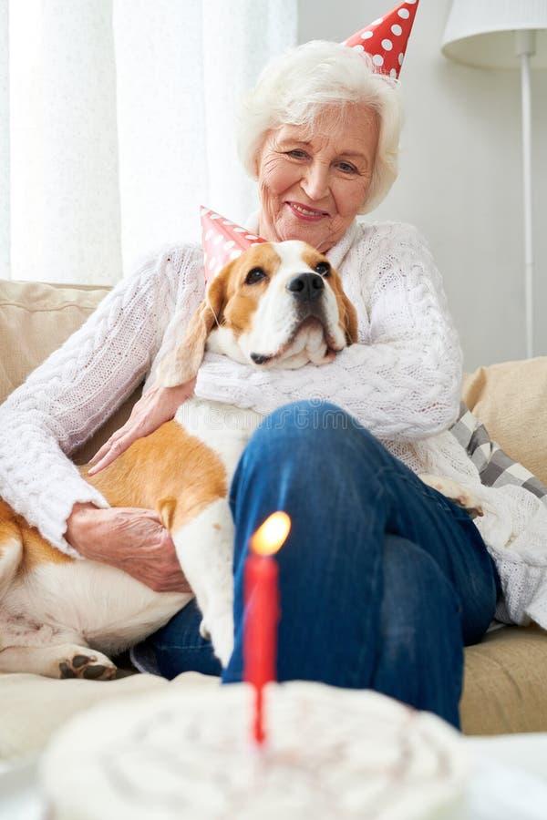 Primo compleanno del cane favorito fotografie stock libere da diritti