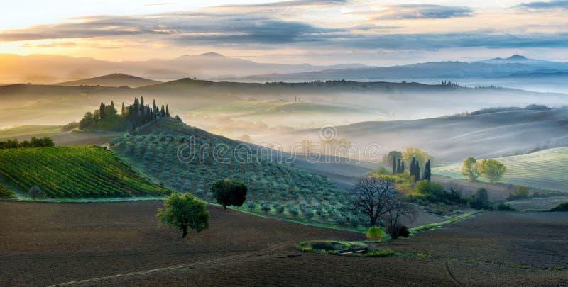 Primo mattino in dÂ'Orcia di San Quirico, Toscana immagini stock libere da diritti