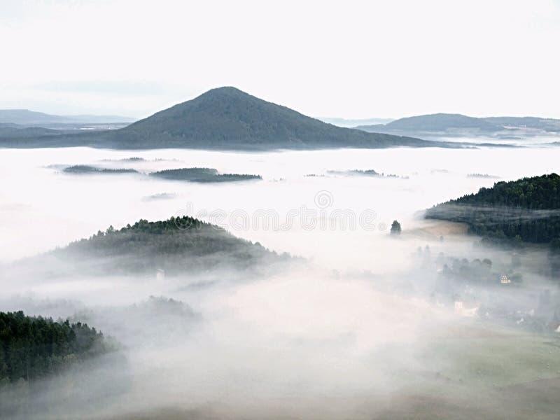 Primo mattino nebbioso della valle di caduta all'interno di alba La nebbia sta muovendosi fra le colline ed i picchi degli alberi fotografia stock