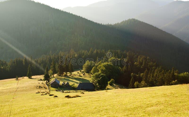 Primo mattino nelle montagne immagini stock libere da diritti