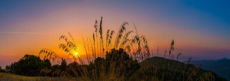 Primo mattino in Toscana fotografia stock