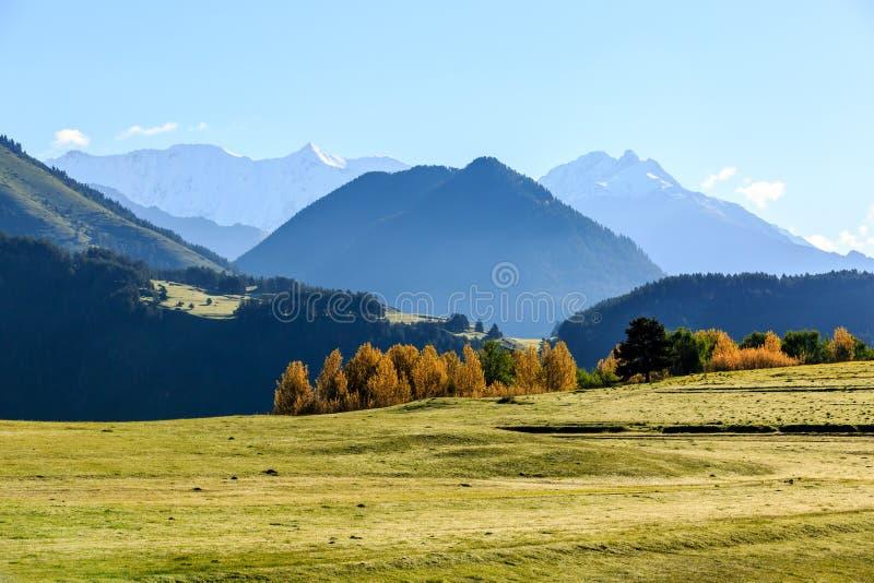 Primo mattino in valle verde in montagne di Caucaso georgia Tusheti fotografia stock