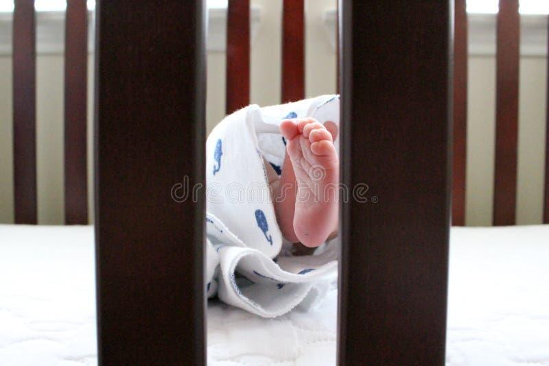 Primo Photoshoot neonato fotografia stock libera da diritti