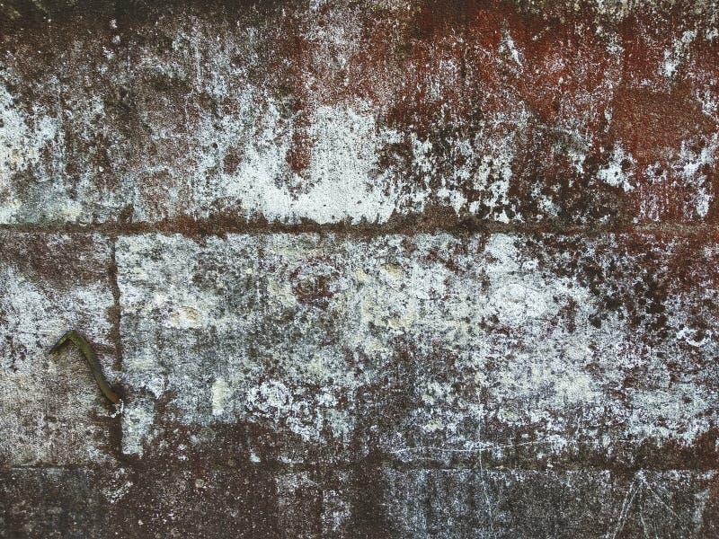 Primo piano antico della parete del castello, fondo strutturato di lerciume fotografia stock libera da diritti