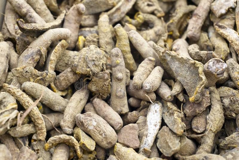 Primo piano asciutto del fondo di curcuma longa delle radici di curcuma Cottura del fondo dell'alimento immagini stock