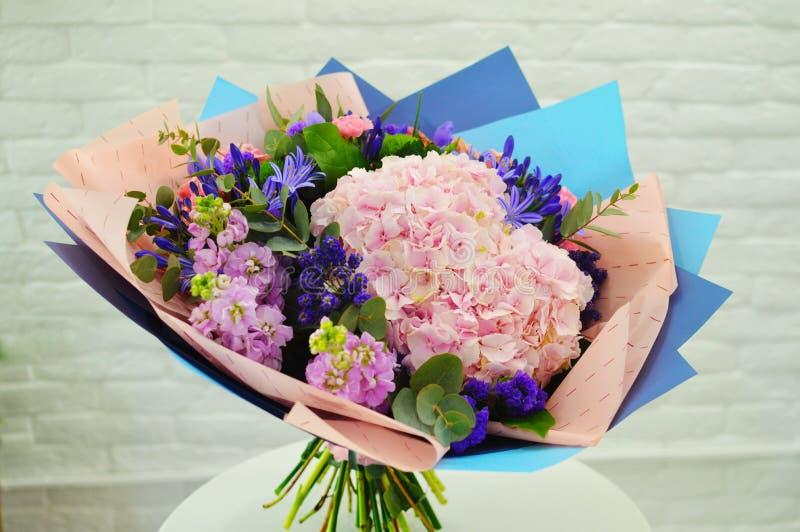 Primo piano blu e rosa dei fiori L'ortensia naturale fiorisce il fondo immagini stock libere da diritti