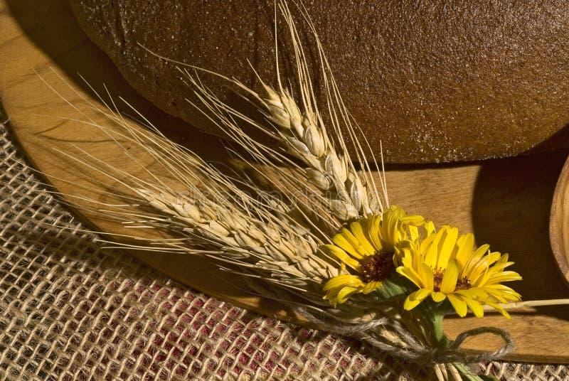 Primo piano con i cereali, i fiori gialli ed il pane. immagine stock