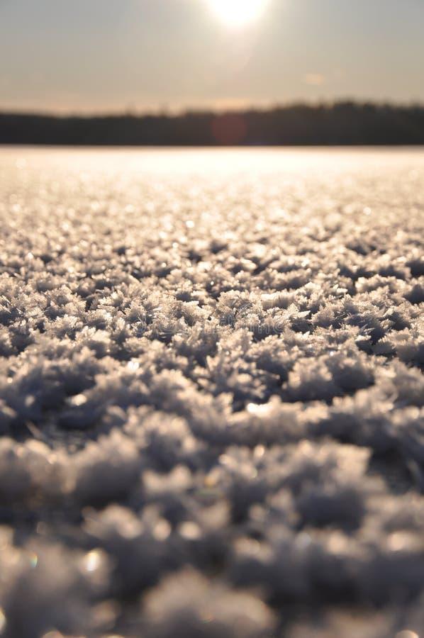 Primo piano congelato del ghiaccio fotografia stock libera da diritti