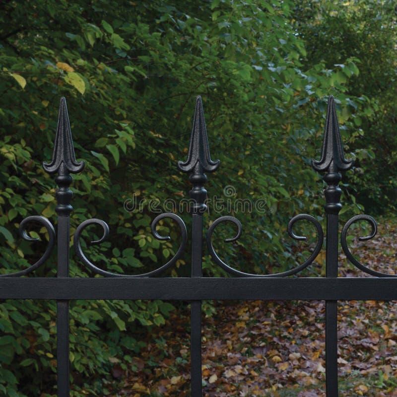 Primo piano decorativo nero forgiato del recinto del ferro battuto, fondo autunnale degli alberi, foglie cadute, grande scena ori immagine stock