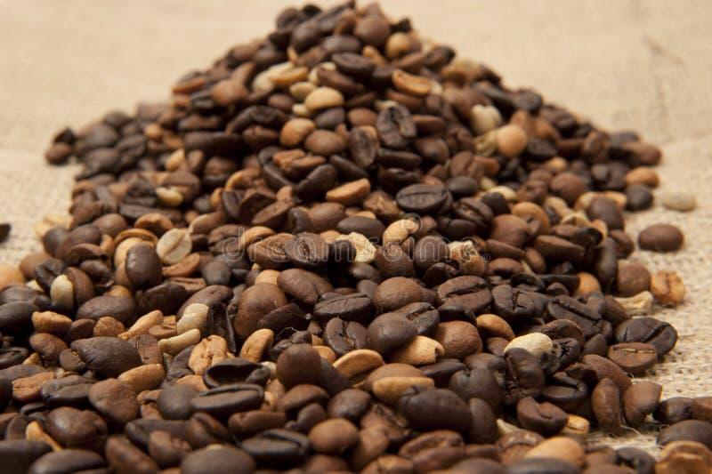 Primo piano dei chicchi di caffè sulla tela di sacco immagini stock