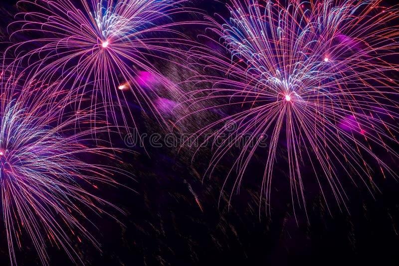 Primo piano dei fuochi d'artificio porpora vivi con le scintille Dispositivi pirotecnici esplosivi per gli scopi di spettacolo ed fotografia stock libera da diritti