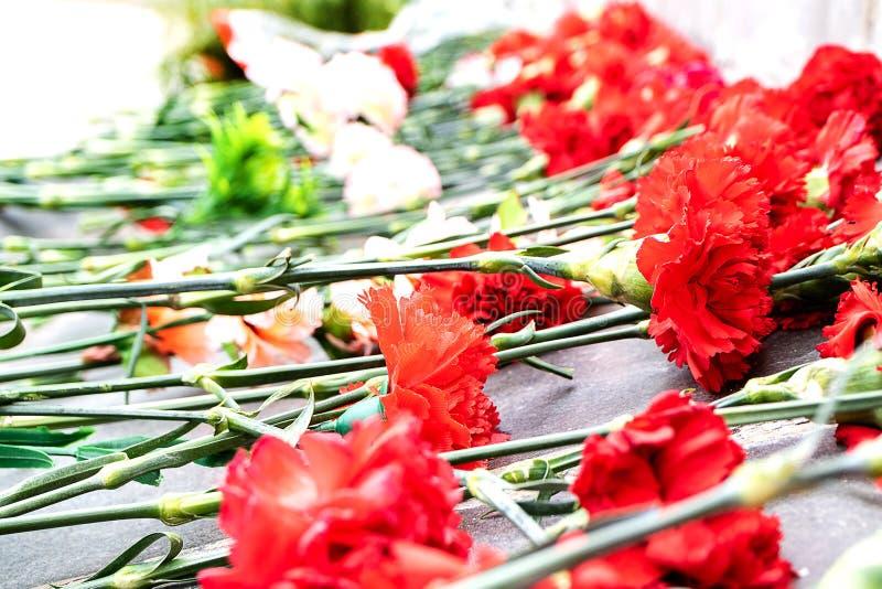 Primo piano dei garofani rossi vicino al memoriale della memoria fotografie stock