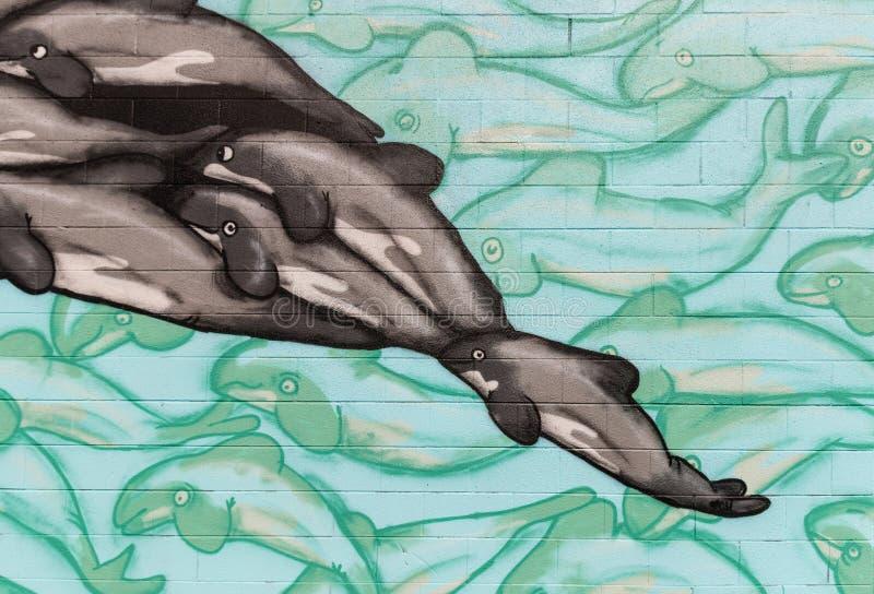 Primo piano dei graffiti del delfino fotografia stock