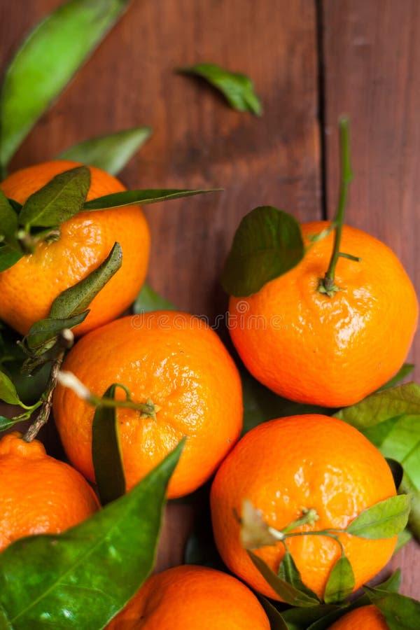 Primo piano dei mandarini dei mandarini fotografia stock